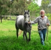Simeon Saadli -a walk in his paddock